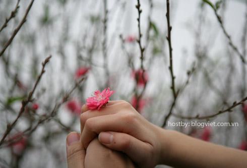 Blog Radio 118: Đôi tình nhân mùa xuân