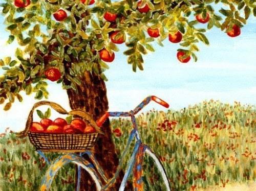 Chuyện về quả táo chín
