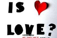 Yêu là...