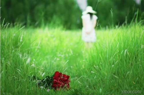 Cặp đôi bất đắc dĩ (Cỏ, hoa và tình yêu, phần 13)