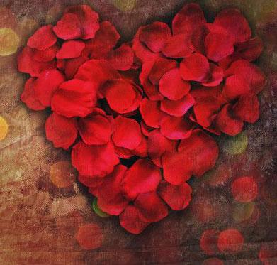 Cỏ, hoa và tình yêu (Phần cuối)