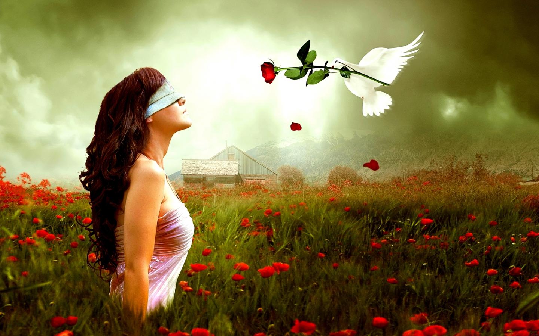 Như cõi thiên đường (Phần 28)