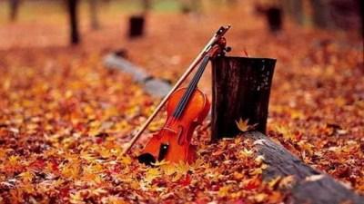 mùa thu, blog radio