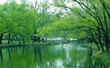 DCOL 107: Từ Venice phương Đông đến vườn địa đàng