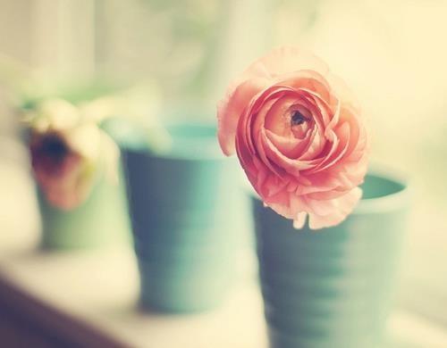 Em là để yêu