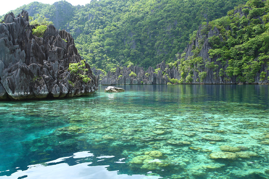 Dấu chân online 77:  Đi bụi ở Palawan