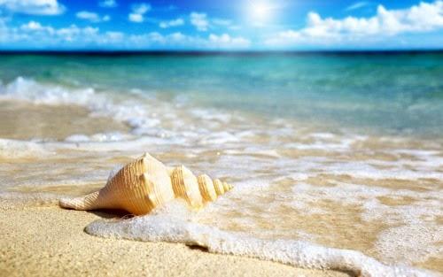 Chân dung của biển