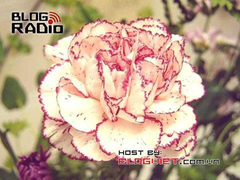 Đợi chờ hạnh phúc, blog radio 321