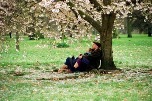 Nối lại mùa xuân