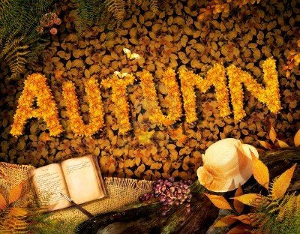 CXAN 227: Nhìn những mùa thu đi