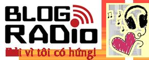 Thông báo về việc thay đổi tên miền chính của website Blog Việt – Blog Radio