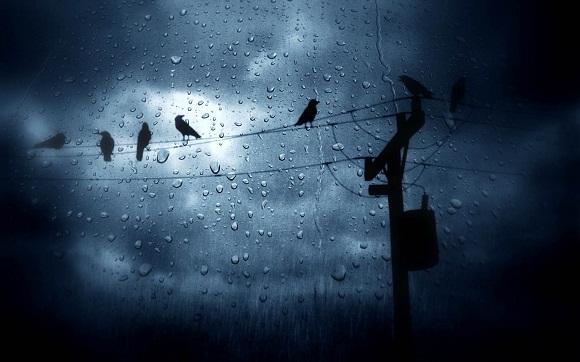 mưa đêm