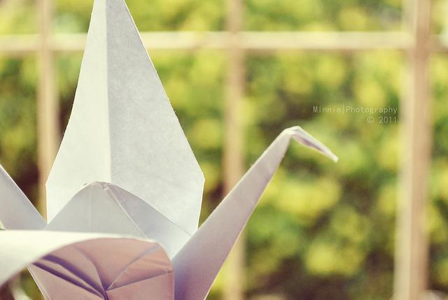 Vút bay trong gió