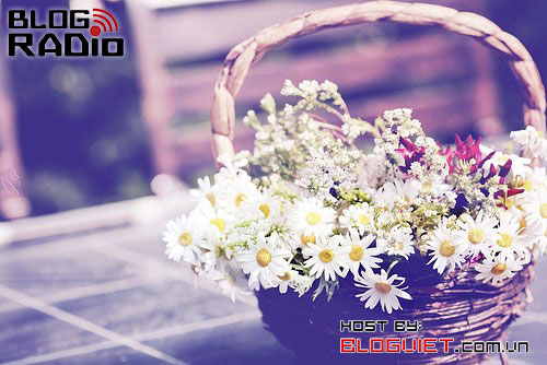 blog radio 327, gửi thanh xuân của chúng ta