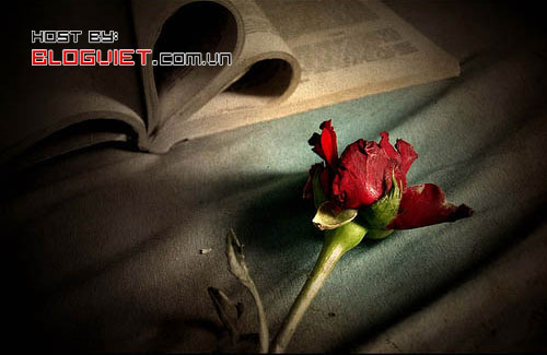 CXAN 202: Khúc Thụy Du - miên man dòng ký ức