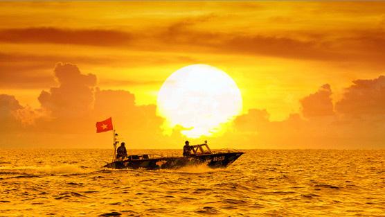 M4S 8: Việt Nam trong trái tim tôi