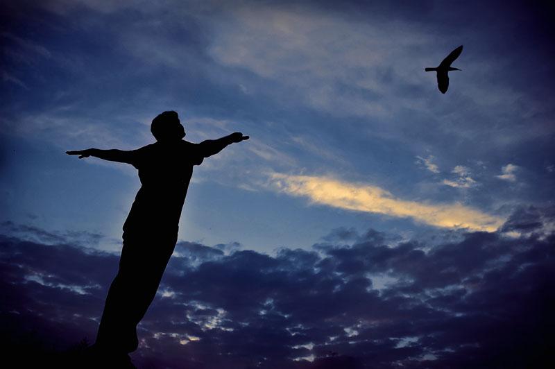 Ai cũng có thể bay