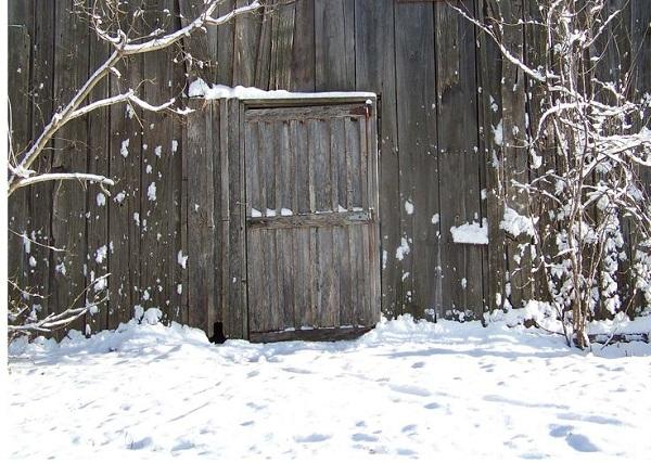 Mùa đông về gõ cửa