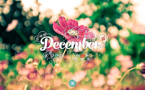 Tháng mười hai khi yêu thương về!