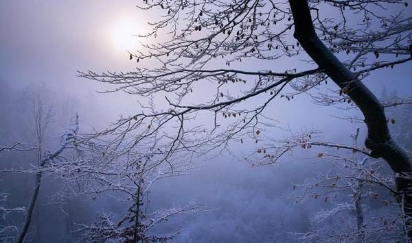 Tháng 12 về có nắng giữa gió đông?