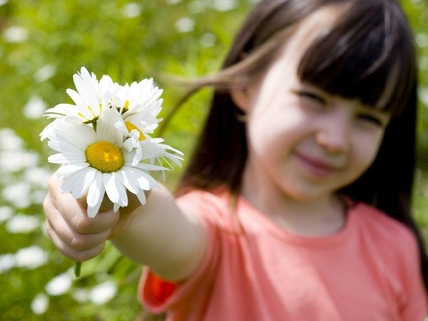 CXAN 247: Sống như những đóa hoa