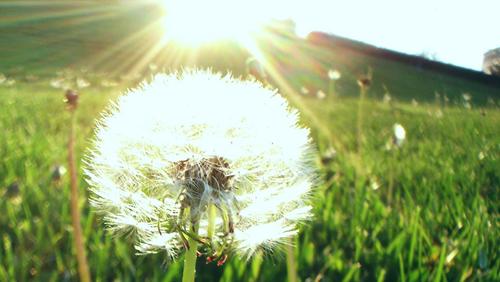 Blog Radio 400: Cuộc sống là món quà tuyệt vời nhất mỗi chúng ta có được