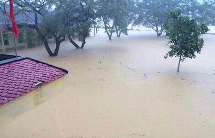 Lòng đau nghe mưa lũ miền Trung