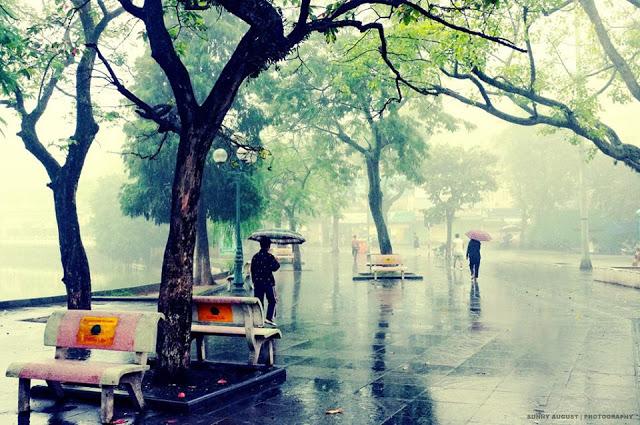 Hà Nội ngày mưa cuốn đông về