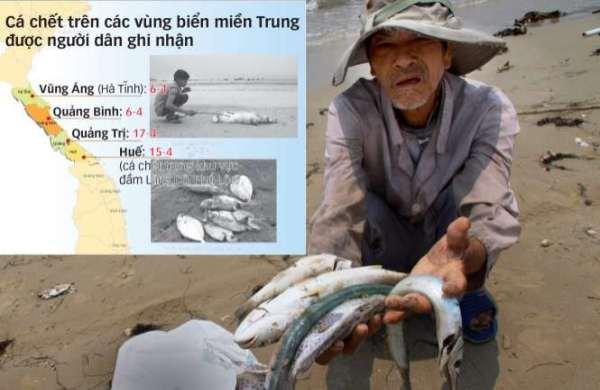 Hot News 25/04: Cá chết trắng biển miền Trung: Cần câu trả lời thỏa đáng
