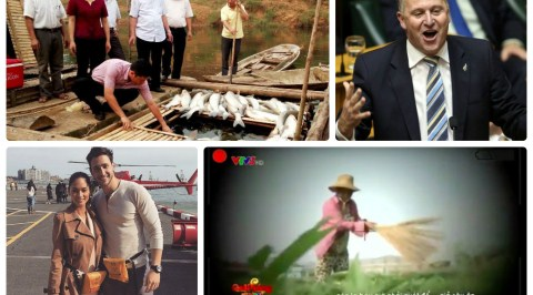 HotNews 12/05: VTV xin lỗi và đình chỉ phóng viên vụ cây chổi quét rau