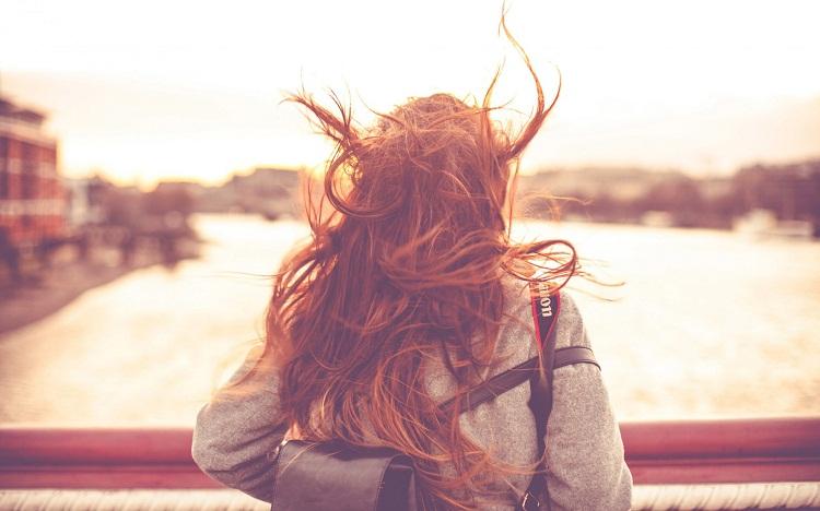 Những cơn gió đi hoang