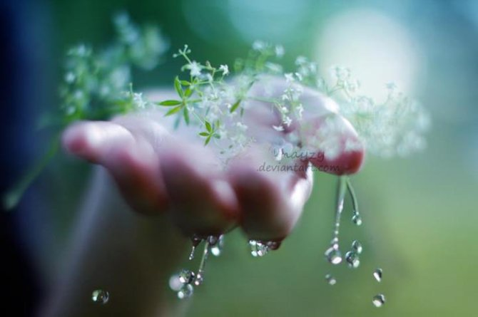 Khẽ mỉm cười về những chiều mưa