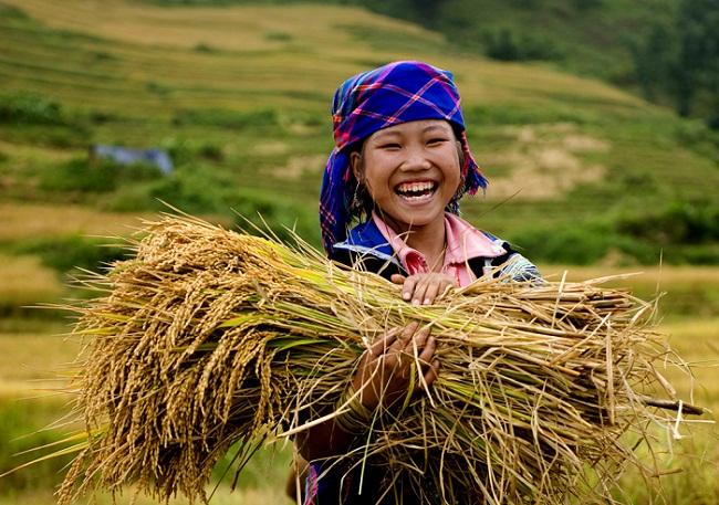 Top những điều thú vị ở Việt Nam qua con mắt của du khách nước ngoài