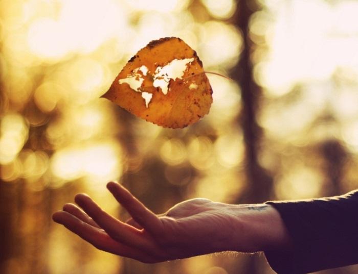 Đặc quyền của mùa thu cho những tâm hồn mong mỏi sống
