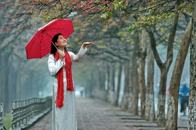Nàng xuân về rồi thành phố vẫn đang mưa...