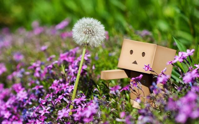 Nụ cười nuôi dưỡng chánh niệm và sự an lạc