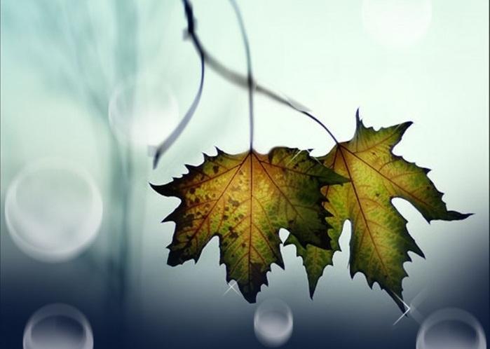 blog radio, Tháng mười về nghe câu hát chơi vơi