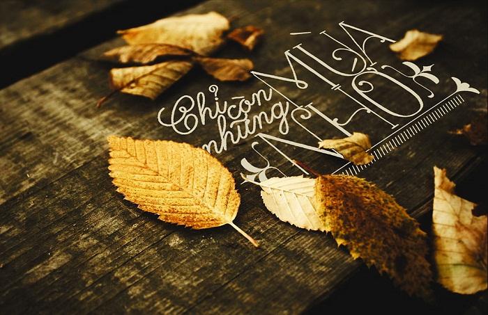 blogradio, Tháng mười một trời trở gió và em nhớ anh