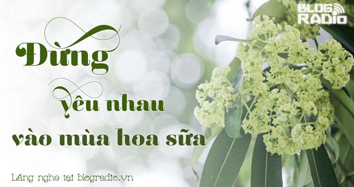 Blog Radio 519: Đừng yêu nhau vào mùa hoa sữa