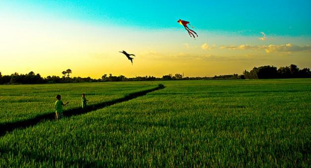 Thơ Radio: Em cứ sống một cuộc đời của cỏ (Lê Thúy Nhân)