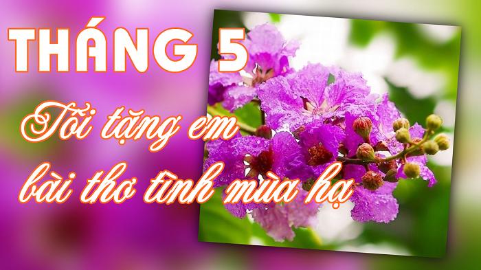 Tháng 5, tôi tặng em bài thơ tình mùa hạ (Vlog Thơ)
