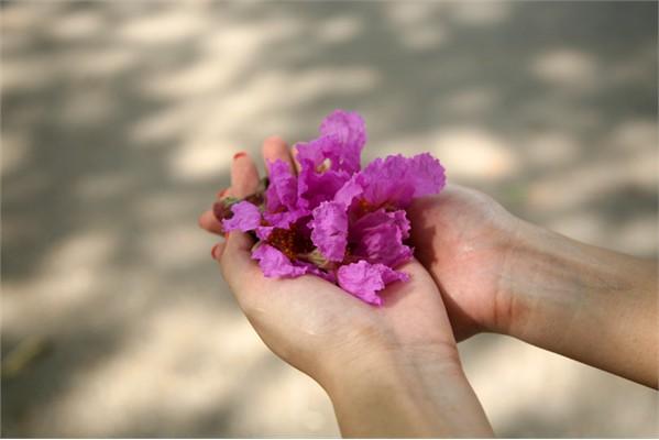 Thơ Radio: Bỗng muốn tìm về tháng bảy đã xa (Việt Linh)