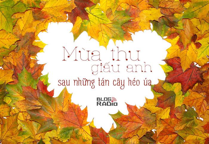 Blog Radio 509: Mùa thu giấu anh sau những tán cây héo úa