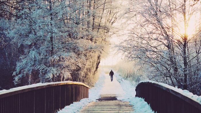 Yêu thương không đủ nên không thể cùng nhau đi hết con đường