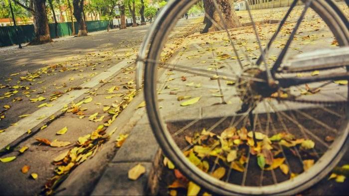 Người về với mùa thu