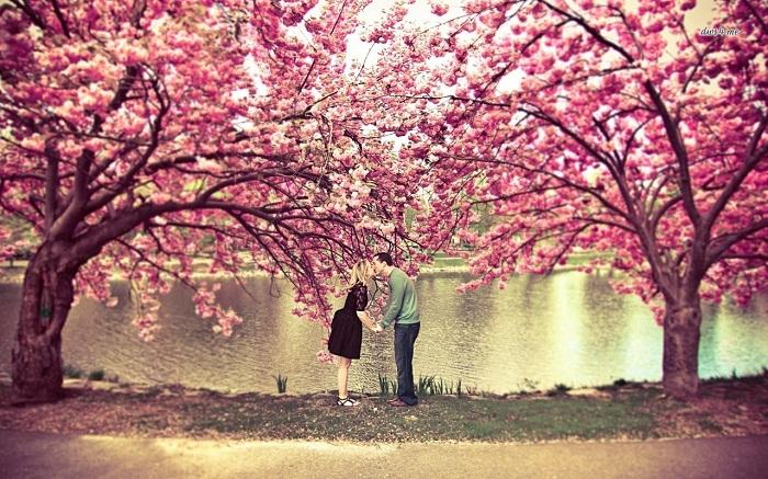 Blog Radio 535: Hẹn anh ngày hoa nở