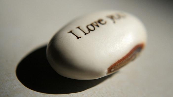 Hạt mầm tình yêu