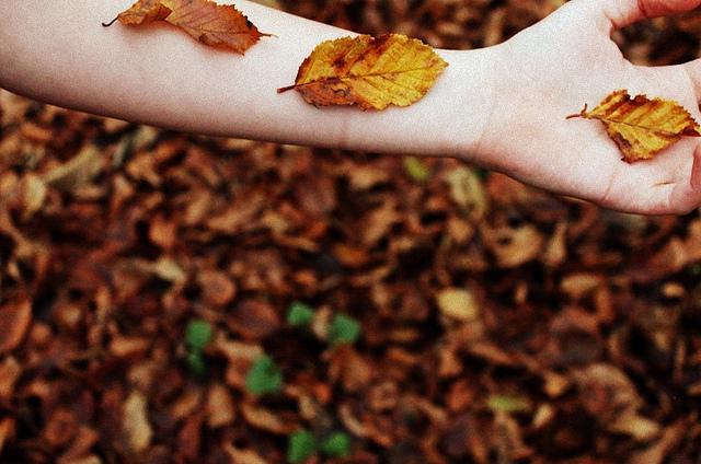 Chạm tay vào nỗi nhớ