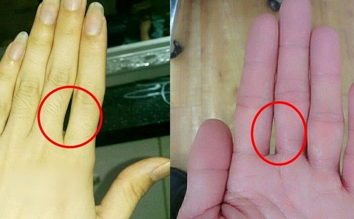 Dự đoán chính xác về tính cách của con người thông qua khe hở giữa các ngón tay